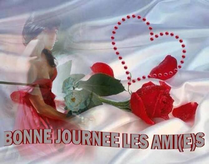 BONNE JOURNEE MES AMI(E)S