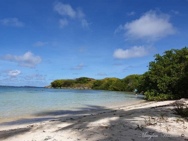 La Martinique : Mer et soleil