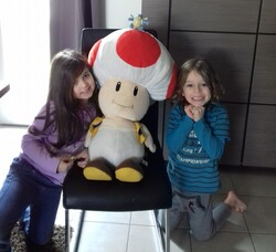 peluche geante toad