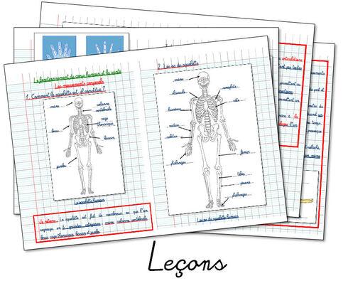 Les mouvements corporels