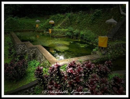 12 Août 2014 - Temple de Mengening... et un moulon de prières à Tirta Empul !