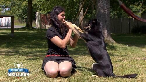 """""""Mon chien est le meilleur"""""""