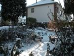 Mon jardin sous la neige ce 16 janvier 2013