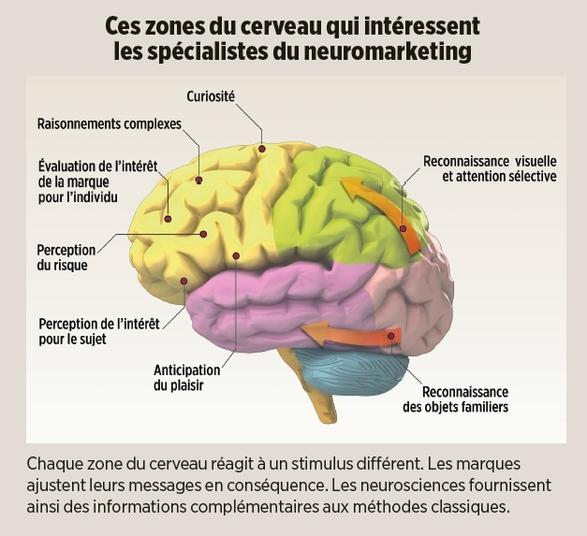 Neuromarketing3