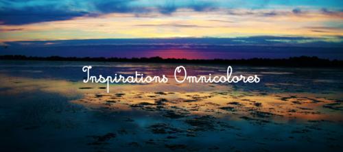 Blogs de familles IEF: inspirations omnicolores