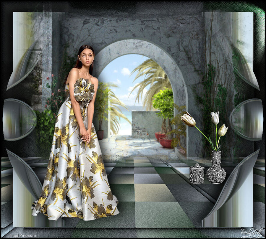 Top Elegancia
