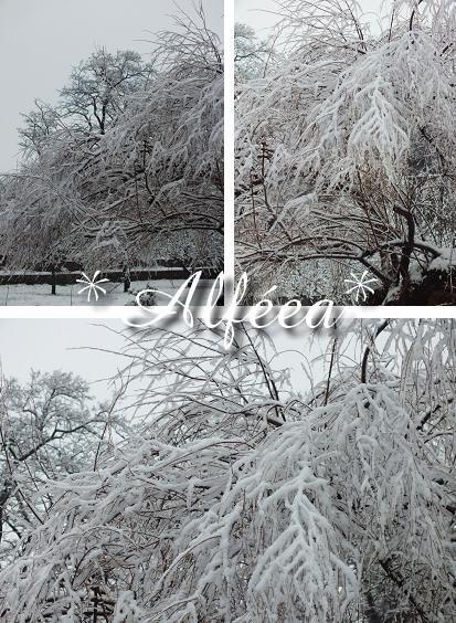 2013-07_neige1.jpg