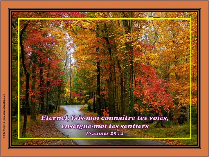 Eternel, fais-moi connaître tes voies - Psaumes 25 : 4