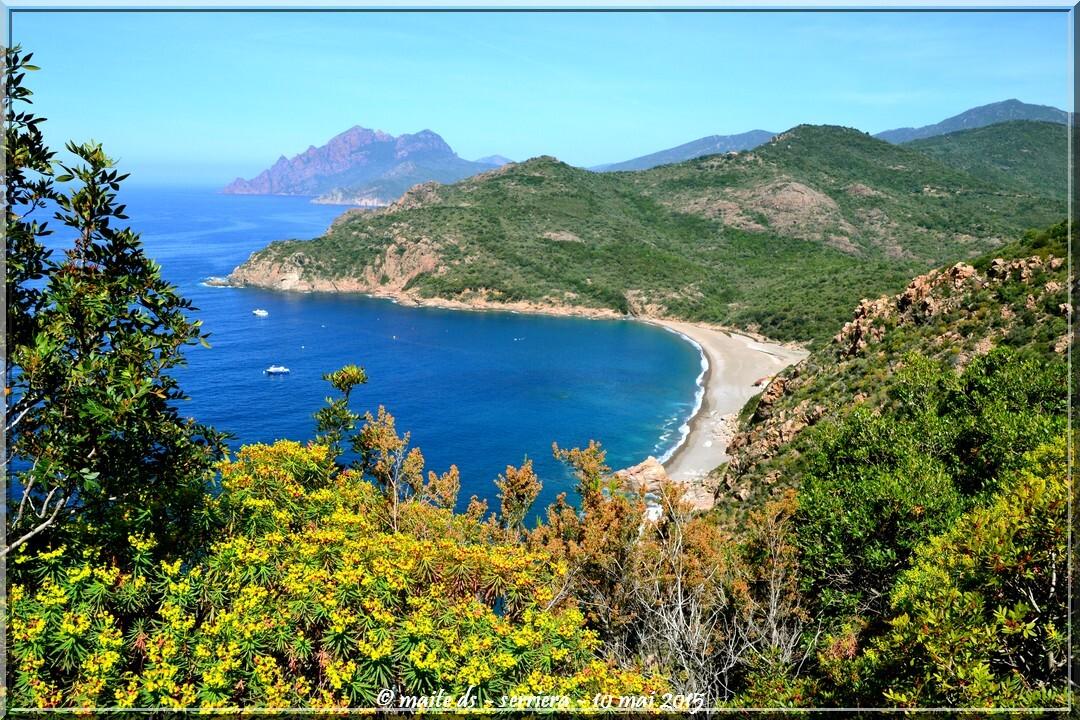 Plage de Bussaghia -  Serriera - Corse