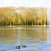 panorama du bassin de l'octogone - automne 2009