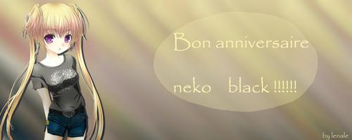 Bon anniversaire neko black & Hay line!