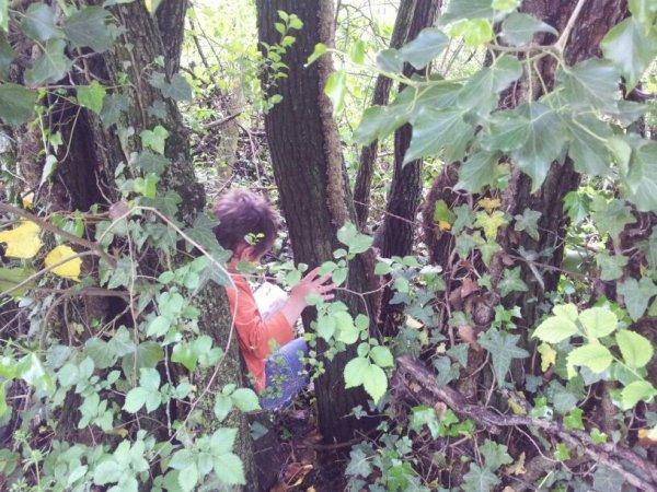 ce lundi on marche à la recherche de cachettes