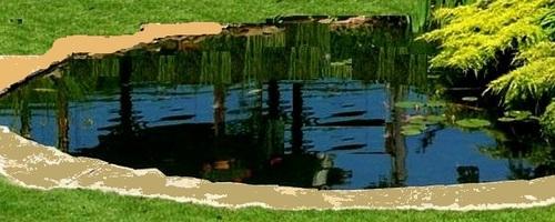 Jardin d'agrément, faire son propre bassin et assurer son équilibre