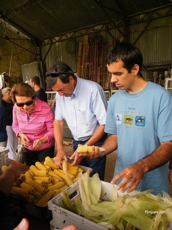 prq-epluchettes de blé d'inde 2011 (26) (copier)