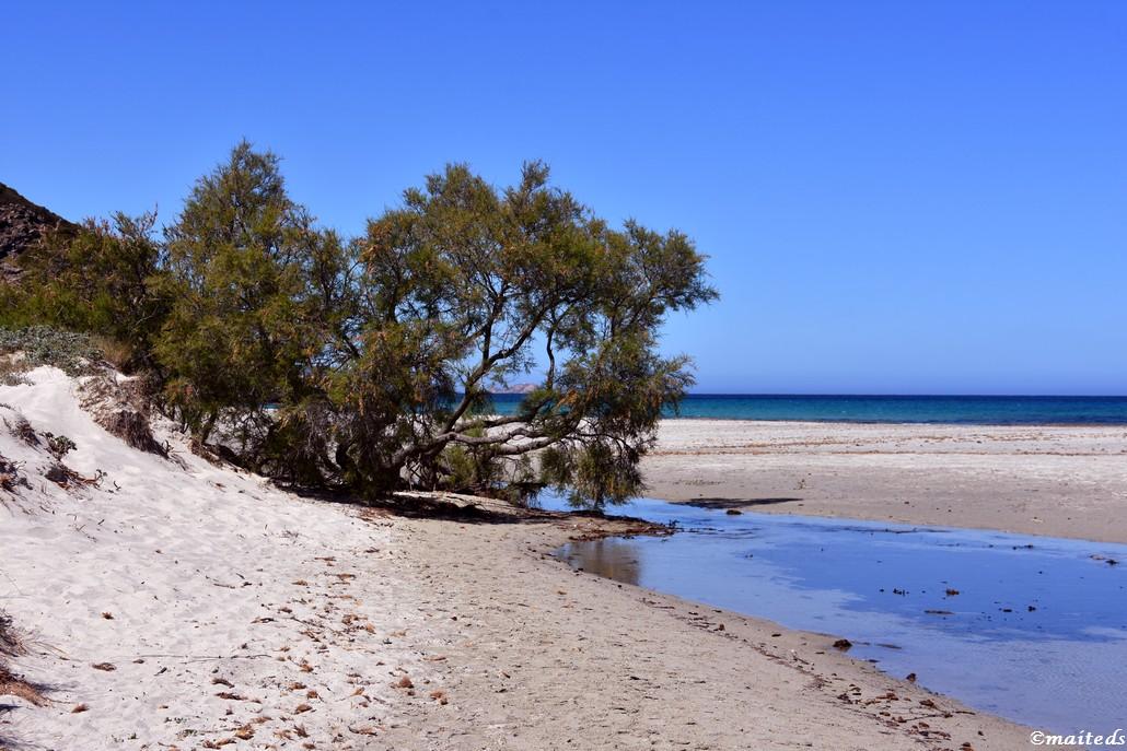 Sur le sentier de la plage