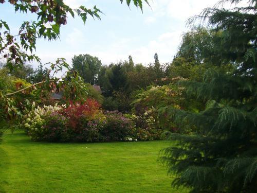 La-Muette--Jardin-2---30-08-07.jpg