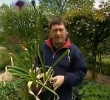 De la triche ? Non, ça s'appelle planter intelligent !