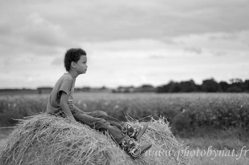Dans les champs… en noir et blanc...