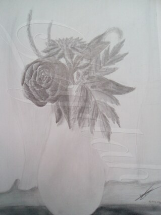 Des fleurs en viver ^^