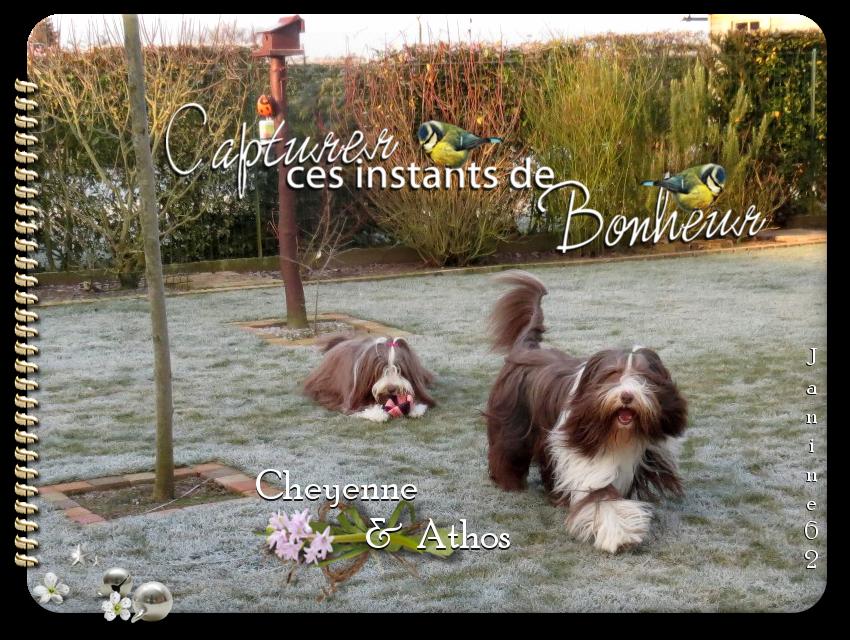 ♥ Athos & Cheyenne ♥