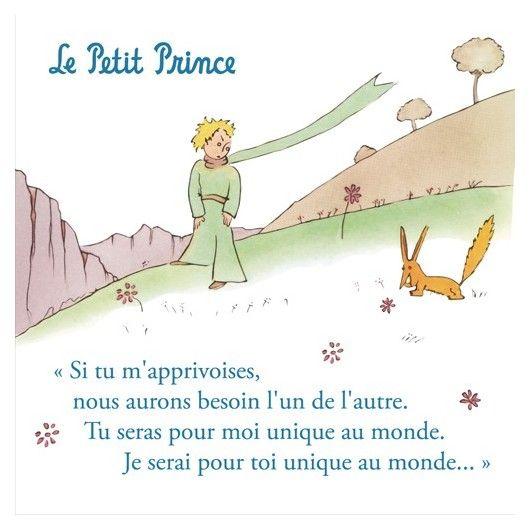 Succombez pour ce magnet en metal du Petit Prince pour décorer votre réfrigérateur. Il représente le Petit Prince et son ami le renard. Inscription : ''Si tu m'apprivoises, nous aurons besoin l'un de l'autre. Tu seras pour moi unique au monde. Je serai pour toi unique au monde''. Taille: 8 x 8cm.