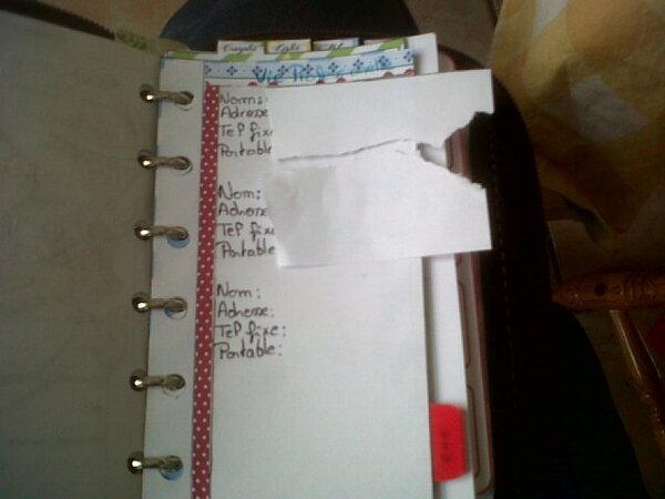 De G. à D.: Nouvelle couv de mon agenda (le cuir marron bof); photos 2 à 4: nouvelle page de garde DIY et mon code couleur derrière; photos 5 et 6: Page de répertoire DIY (administrations et vie professionnelle); photos 7 à 9: Mois d'Août décoré, cette semaine (sur deux pages) ainsi que le mois de Septembre et le dos du mois d'Août; photos 10 à 16: Partie répertoire nouvelles pages; photos 16 à 18: pages info santé( la mienne et celle de Zhom)