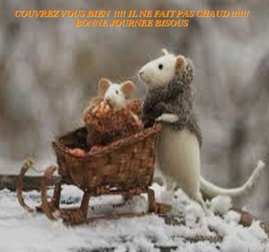 """Résultat de recherche d'images pour """"gif souris qui  a froid"""""""