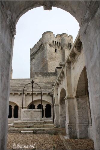 Abbaye de Montmajour Extérieurs la Tour Pons de l'Orme vue du cloître
