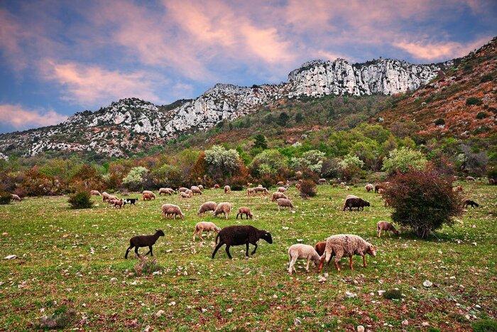 Les Plus Beaux Villages Médiévaux De France -