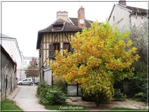 maison-et-arbre-vert-et-jaune.jpg