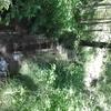 Ruisseau, vers le lac du haut