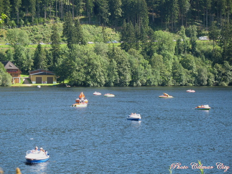 Allemagne : Titisee 1/2