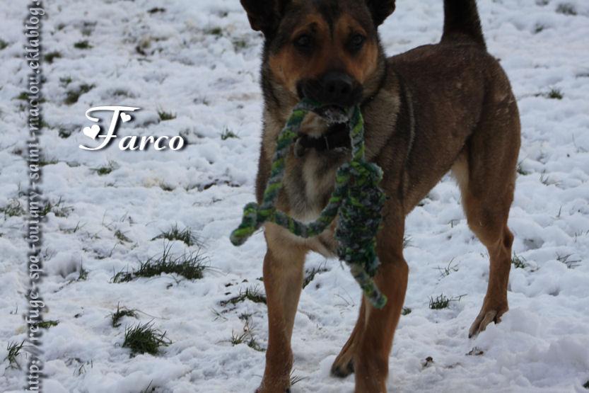 Farco - Nouvelles photos