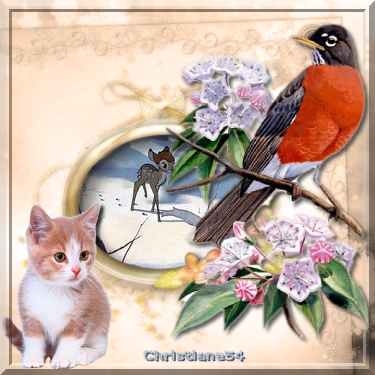 **** Les oiseaux ****