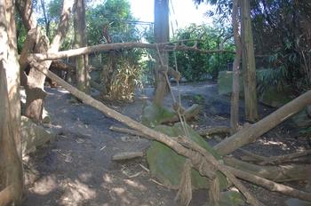 Zoo Duisburg 2012 606
