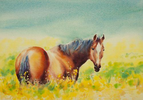 Dessin et peinture - vidéo 2440 : Comment peindre à l'aquarelle un cheval dans le pré ?