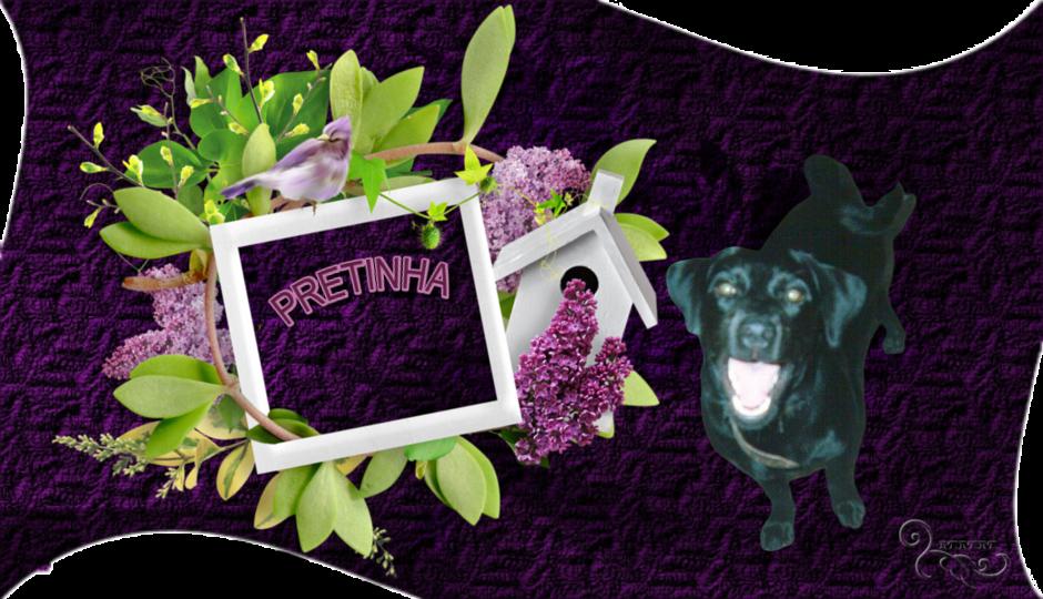 PRETINHA'S THEMES – 04