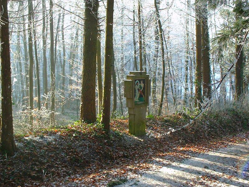 chemin de croix gidwiller sur le mont alsace