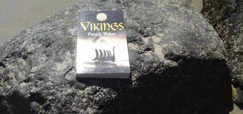 Vikings - Patrick Weber