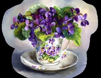 La violette et ... l'Histoire  ...