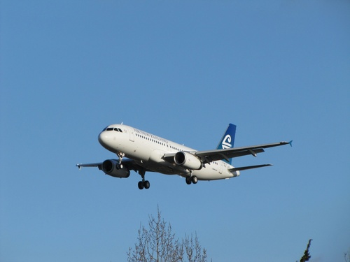 Airbus A 319 320 321