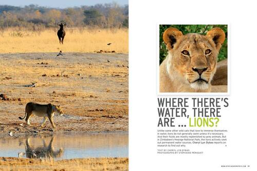Africa Geographic July 2013