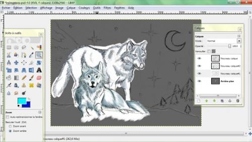 dessin les loups