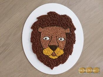 Molly cake au chocolat