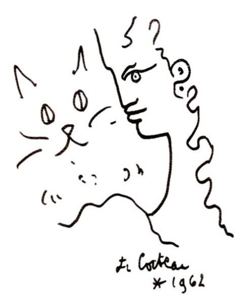 chat-de-Cocteau.jpg