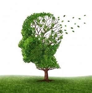 Santé : Alzheimer...Sur le blog de Woluwe essayez le test cognitif qui rassure  ou pas