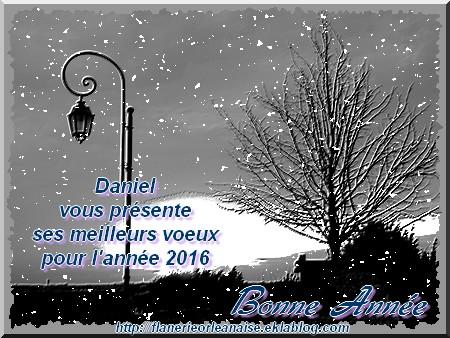 Bonnes fêtes de fin d'année et bonne année 2016