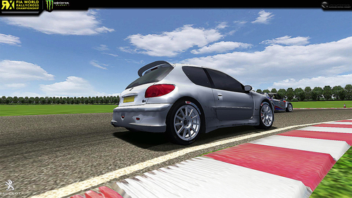 Team 206 S1600 Peugeot 206