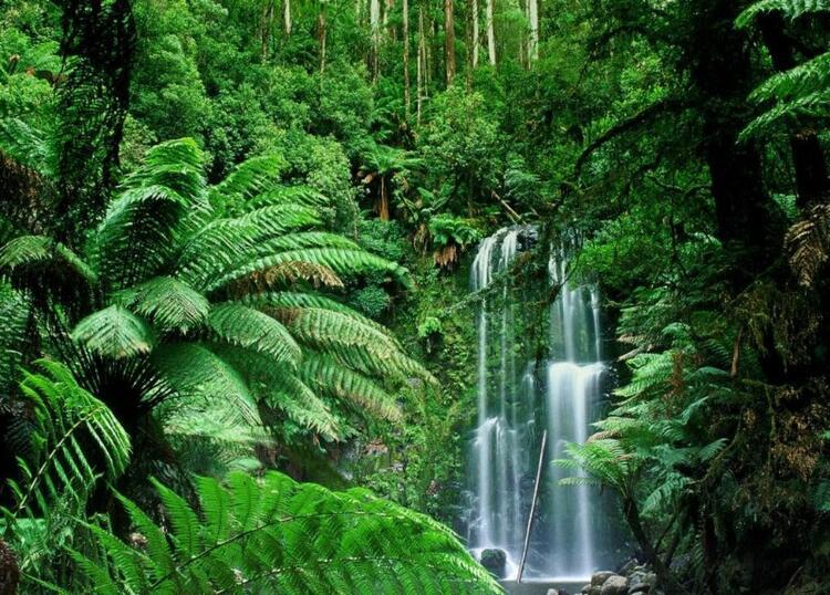 Images du monde : Australie continent vert