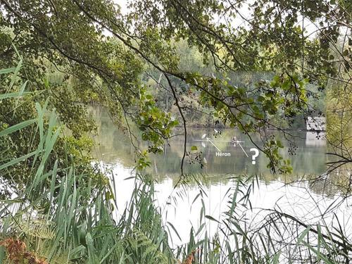 Pollution aux hydrocarbures - Bassin de La Courance